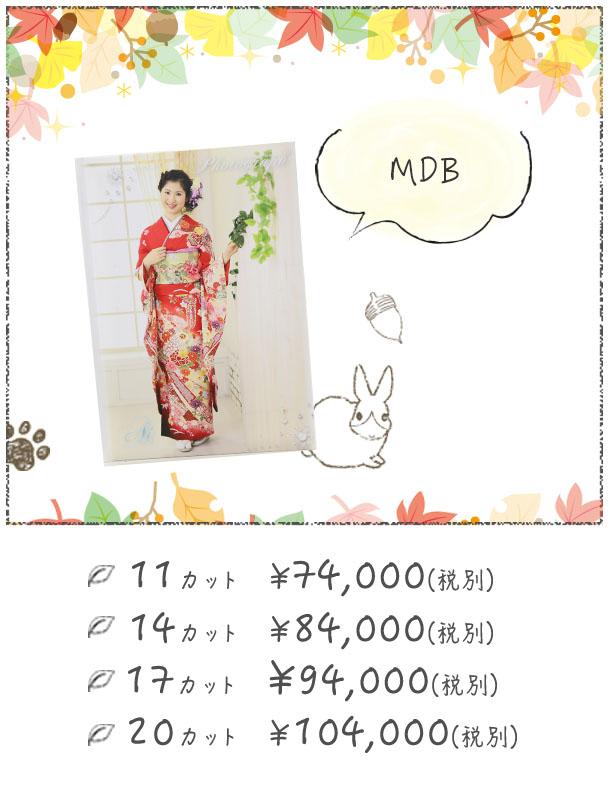 成人式アルバム|MDB