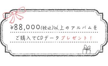 成人式アルバム|CDデータプレゼント