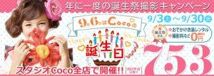 32-coco_972_347